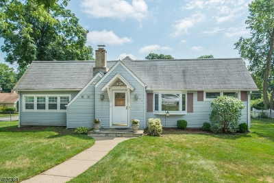 Parsippany Single Family Home For Sale: 44 Hoffman Ave