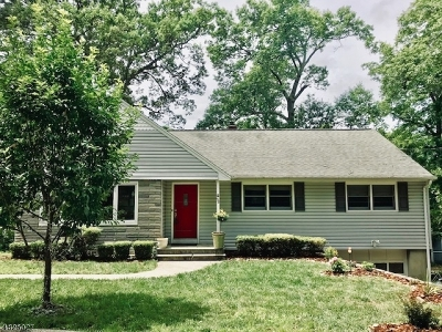 Wayne Twp. Single Family Home For Sale: 98 Mohawk Trl
