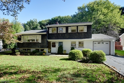 Springfield Twp. Single Family Home For Sale: 85 Laurel Drive
