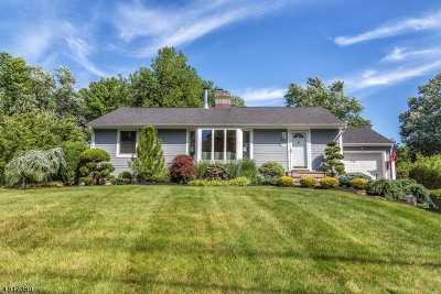 Scotch Plains Twp. Single Family Home For Sale: 2132 W Broad St