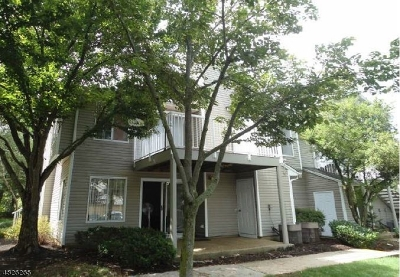 Bedminster Twp. Condo/Townhouse For Sale: 48 Pine Ct