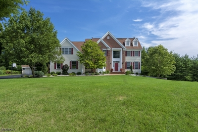 Branchburg Twp. Single Family Home For Sale: 104 Renda Dr