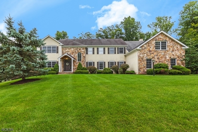 Mendham Twp. Single Family Home For Sale: 3 Rockwell Ct