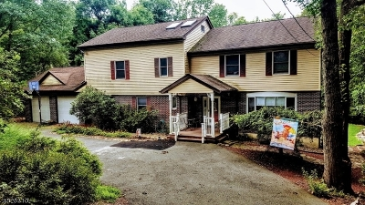 Boonton Twp. Single Family Home For Sale: 91 Rockaway Dr