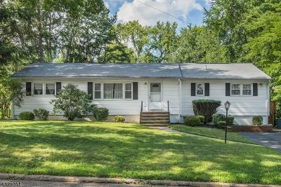 Randolph Twp. Single Family Home For Sale: 7 Cedar Ter