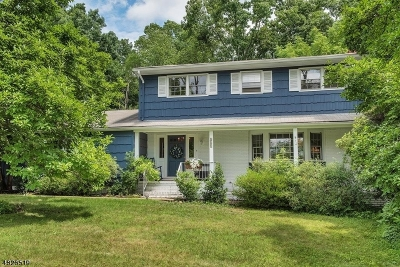 Long Hill Twp Single Family Home For Sale: 517 High St