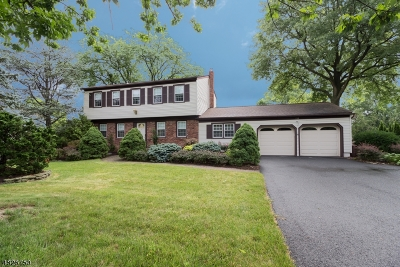 Parsippany-Troy Hills Twp. Single Family Home For Sale: 235 N Beverwyck Rd