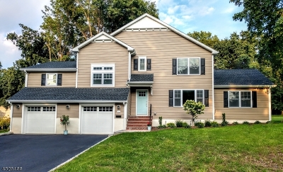 New Providence Single Family Home For Sale: 12 Salem Rd