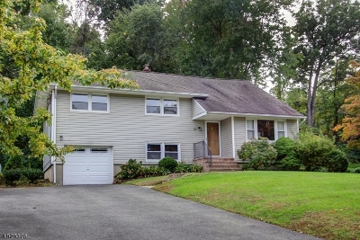 Morris Twp. Single Family Home For Sale: 33 Terry Dr