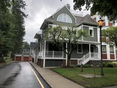 Morristown Town Rental For Rent: 13 Franklin Pl #D