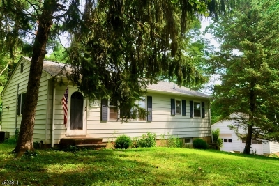 Chester Single Family Home For Sale: 11 Old Mill Rd