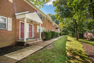 Parsippany-Troy Hills Twp. Condo/Townhouse For Sale: 2467 Route 10 #4B