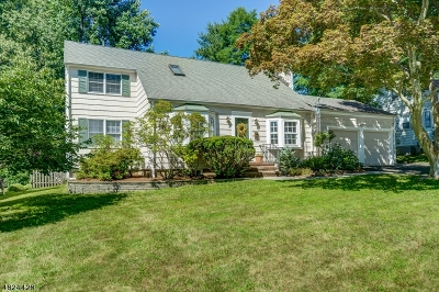 Livingston Single Family Home For Sale: 18 Longview Rd