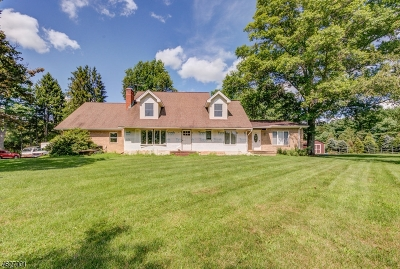 Franklin Twp. Single Family Home For Sale: 334 Skillmans Ln