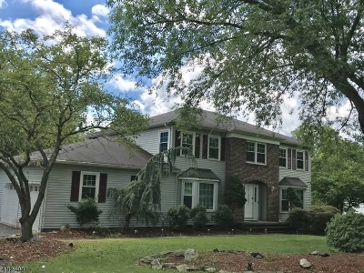 Branchburg Twp. Single Family Home For Sale: 1103 Van Arsdale Dr