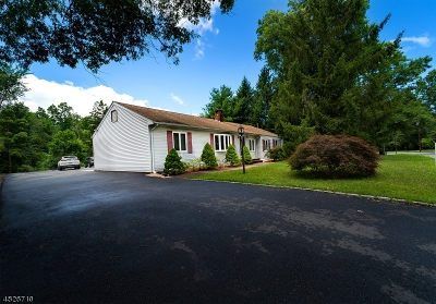 Parsippany-Troy Hills Twp. Single Family Home For Sale: 318 Edwards Rd