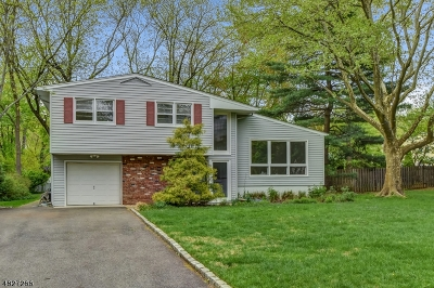 New Providence Single Family Home For Sale: 63 Ridge Dr