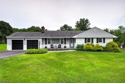 Bridgewater Twp. Single Family Home For Sale: 583 Foothill Rd