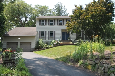 Boonton Town Single Family Home For Sale: 447 Rockaway St