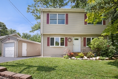Parsippany Single Family Home For Sale: 9 Overlook Ter