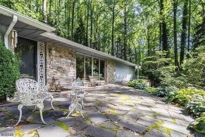Hunterdon County Single Family Home For Sale: 323 Hackett Rd