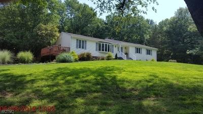 Hillsborough Twp. Single Family Home For Sale: 204 Hockenbury Rd
