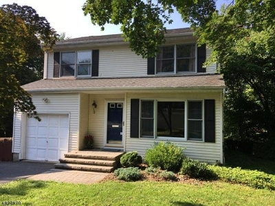 Bernardsville Boro Single Family Home For Sale: 3 Mine Ave