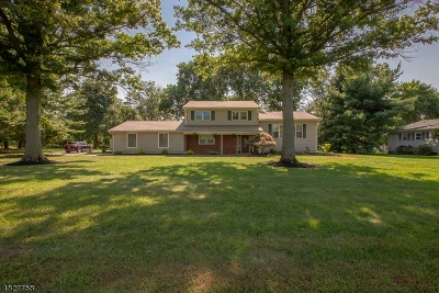Hillsborough Twp. Single Family Home For Sale: 70 Riverview Ter