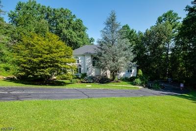 Sparta Twp. Single Family Home For Sale: 4 Farmbrook Rd