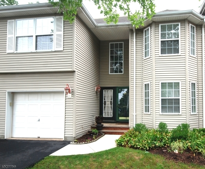 Hunterdon County Condo/Townhouse For Sale: 30 Spring Brook Dr