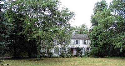 Montgomery Twp. Single Family Home For Sale: 291 Sunset Rd
