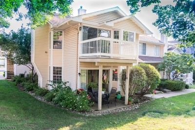 Bedminster Twp. Condo/Townhouse For Sale: 14 Dunbar Ct