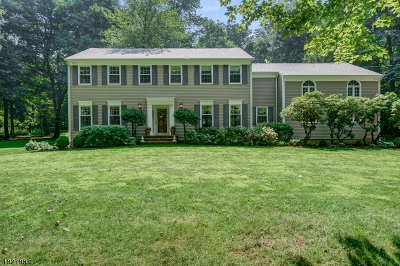 Mendham Boro, Mendham Twp. Single Family Home For Sale: 41 Calais Rd