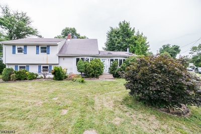 Franklin Twp. Single Family Home For Sale: 16 Hadler Dr