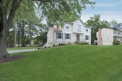 Morris Twp. Single Family Home For Sale: 11 Jardine Ct