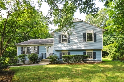 Bernardsville Boro Single Family Home For Sale: 25 Dobbs St