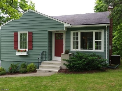 Fredon Twp. Single Family Home For Sale: 238 Willows Rd