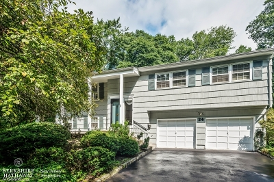 Berkeley Heights Single Family Home For Sale: 24 Hastings