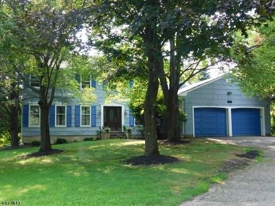 Clinton Town, Clinton Twp. Single Family Home For Sale: 4 Allerton Rd
