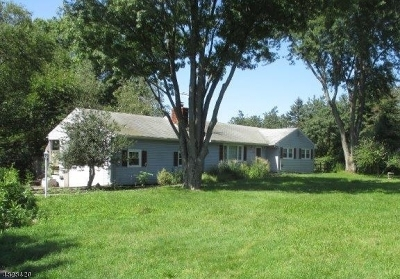 Readington Twp. Single Family Home For Sale: 61 Readington Rd