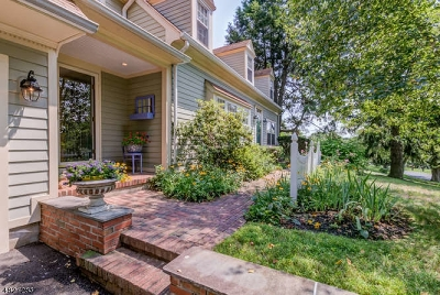 Clinton Town, Clinton Twp. Single Family Home For Sale: 20 Lingert Ave