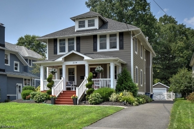 Westfield Town NJ Single Family Home For Sale: $959,000