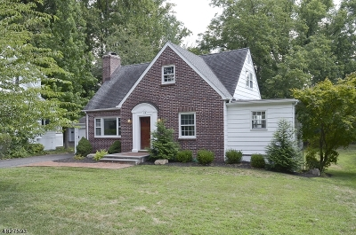 Single Family Home For Sale: 118 Hobart Ave