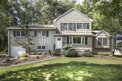 Livingston Twp. Single Family Home For Sale: 4 Rumson Rd