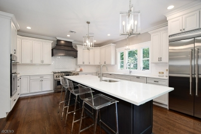 Westfield Town NJ Single Family Home For Sale: $1,649,000