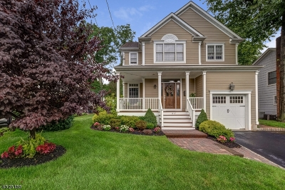 Westfield Town NJ Single Family Home For Sale: $1,225,000