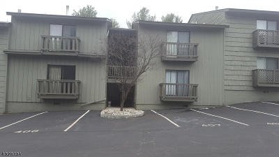Hunterdon County Condo/Townhouse For Sale: 411 Spruce Hills Dr