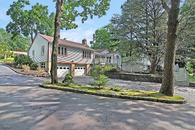 Bridgewater Twp. Single Family Home For Sale: 2212 Washington Valley Rd