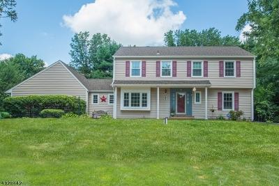 Randolph Twp. Single Family Home For Sale: 6 Sparrow Rd