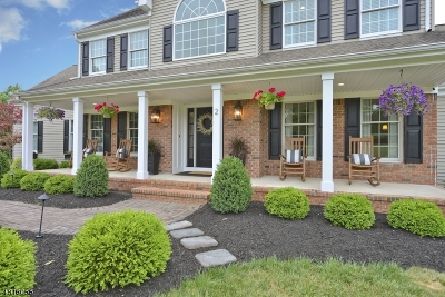 Clinton Town, Clinton Twp. Single Family Home For Sale: 2 Christopher Ln
